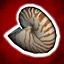 Seven Nautilus Shells [25g]